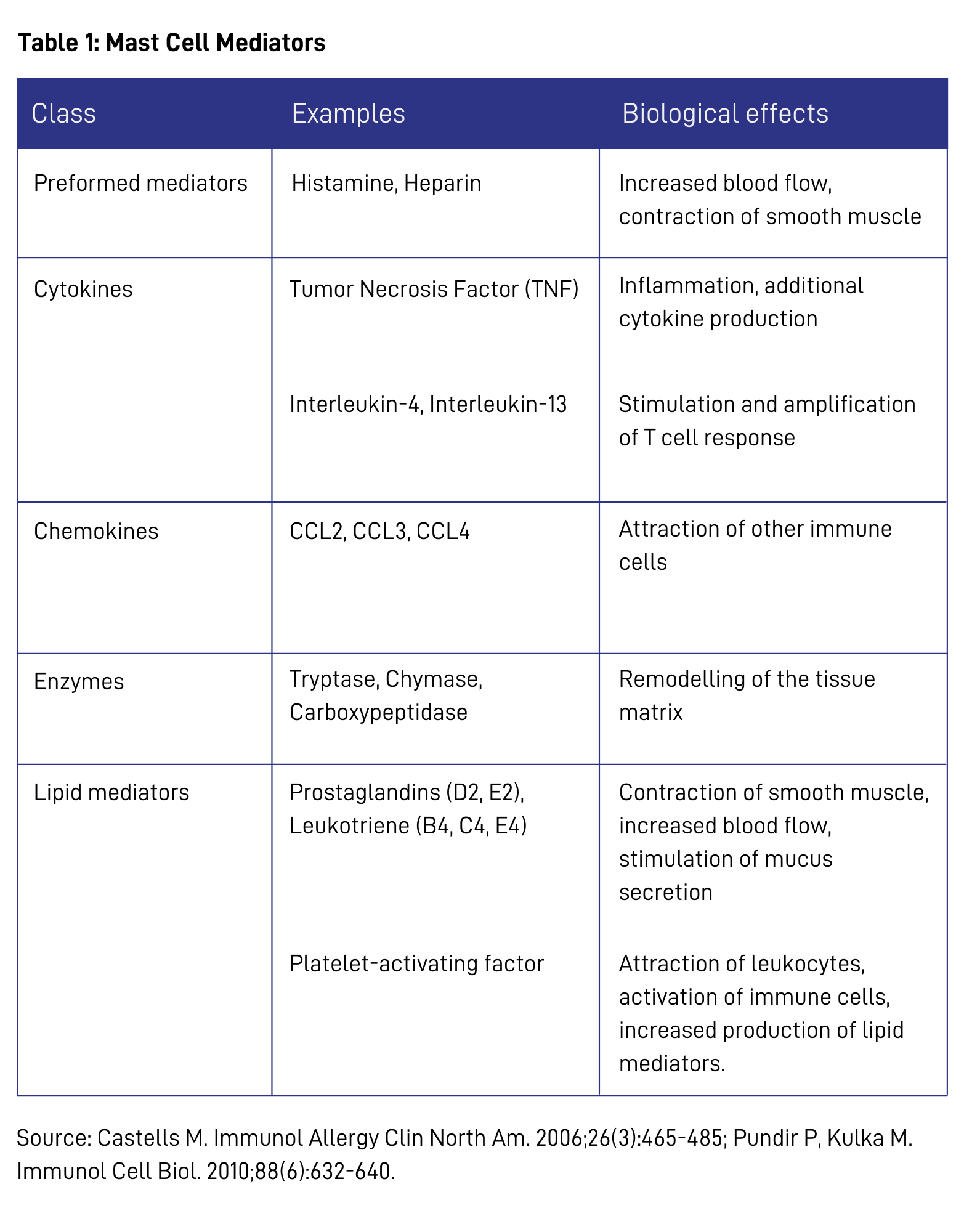 What are Mast Cells?